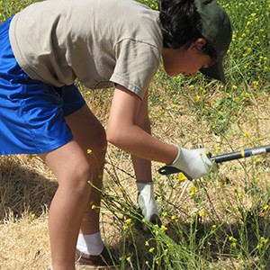 photo of teen volunteer gardening